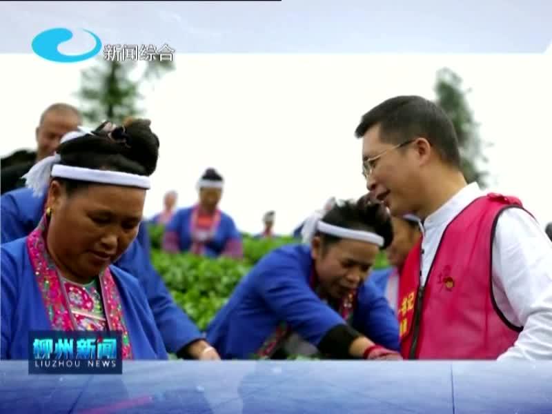 2021年1月20日柳州新闻