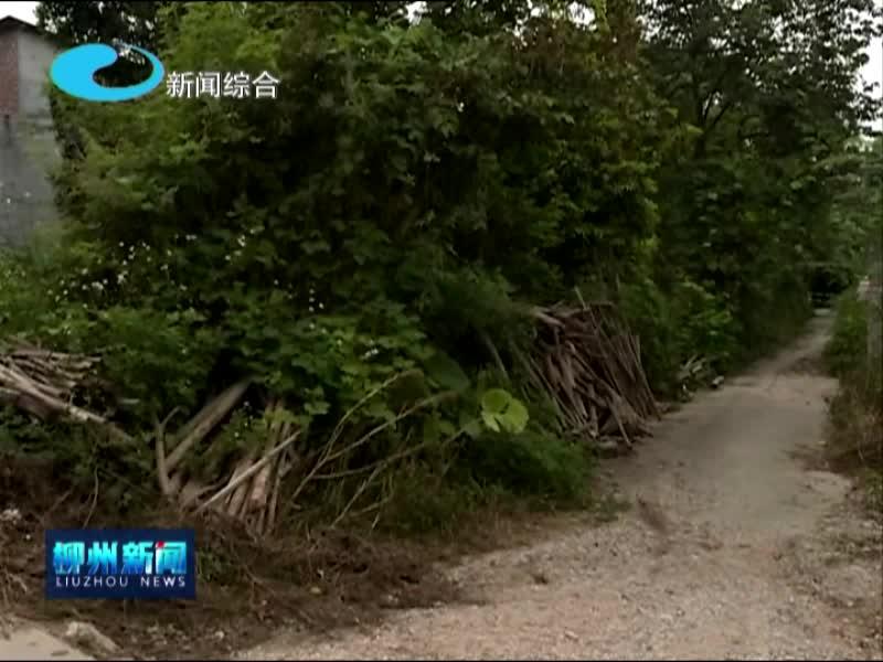 柳城县:部分村屯问题犹存