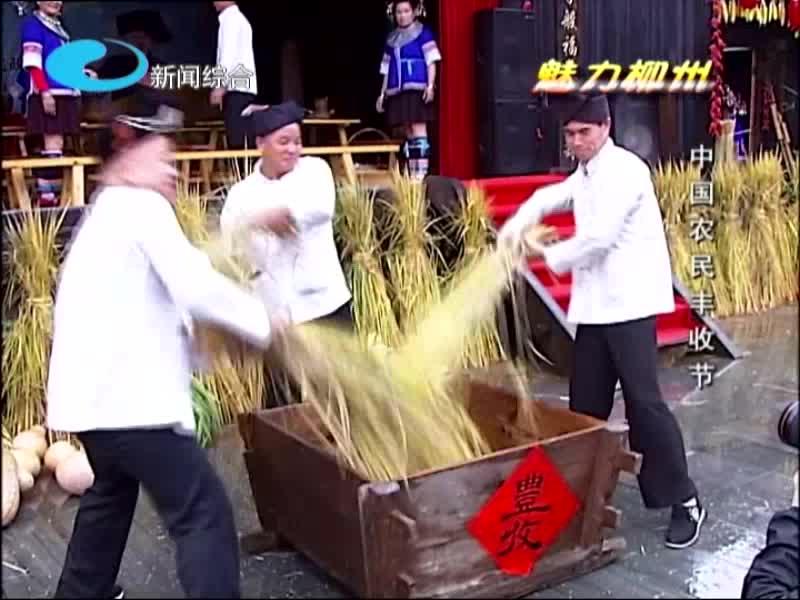 魅力柳州——丰收节