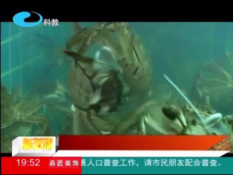 杭州:吃货们要控制!有人连吃三天螃蟹进了医院