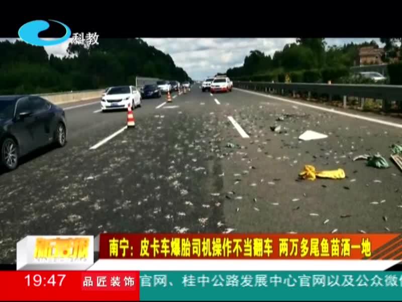 南宁:皮卡车爆胎司机操作不当翻车 两万多尾鱼苗洒一地