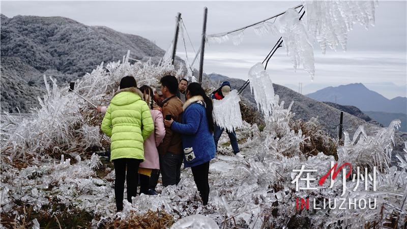 2016广西十大天气气候事件揭晓 降雪台风干旱全有