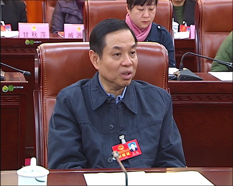 """柳州市代表团审议自治区""""两院""""报告"""
