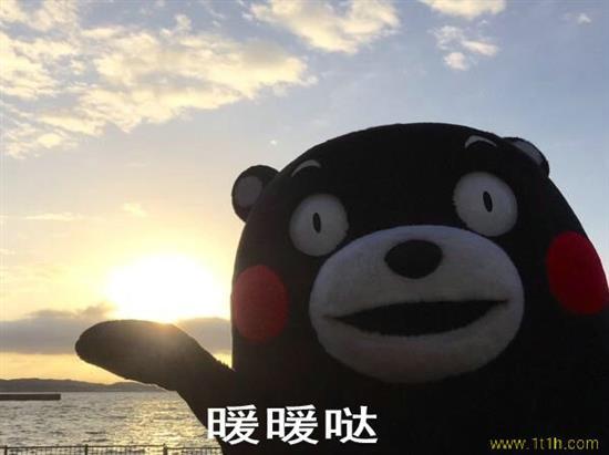 【瓜皮带你啃新闻】今天是大寒,但是柳州暖暖哒!