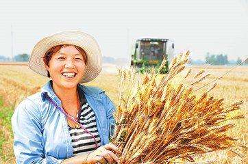 广西2018年将全面完成农村承包地确权工作
