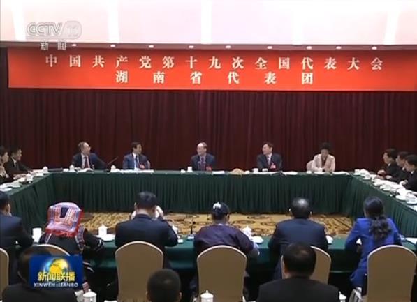 王岐山参加党的十九大湖南省代表团讨论