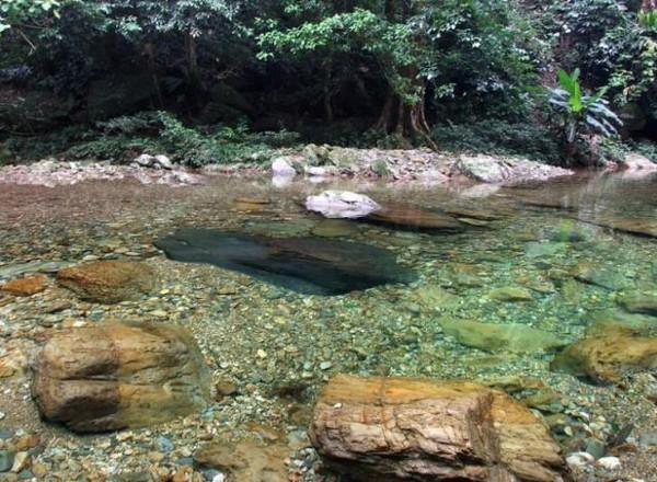 【提醒】上林下水源景区临时关闭 想去嗨的要改行程啵
