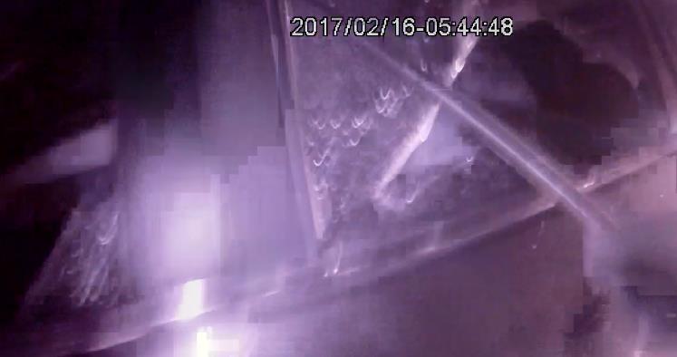 【什么况】凌晨5点,这群人在雒容收费站被猛砸车窗