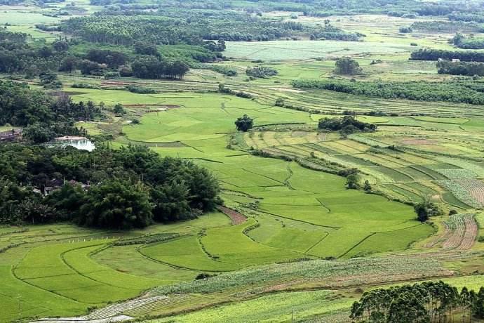 广西超标完成划定永久基本农田保护面积任务