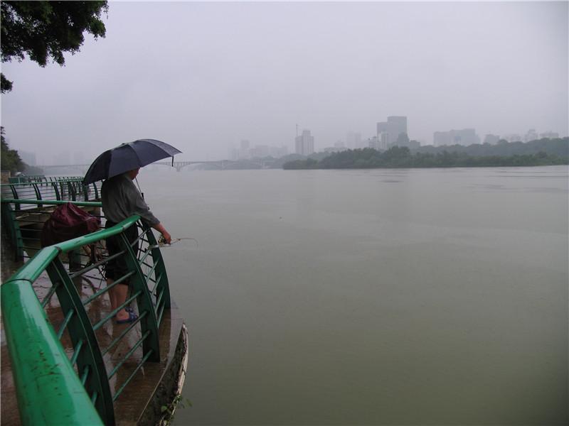 红花水电站早做准备腾库容 暴雨倾泻柳江河水位不涨反降