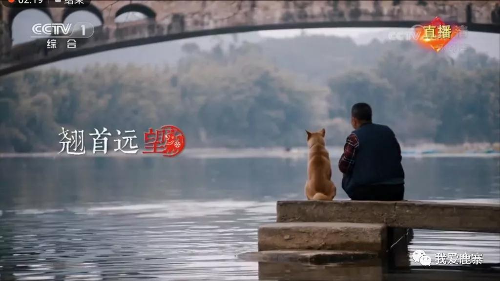 【内幕曝光】鹿寨中渡上春晚 原来央视选景拍摄纯属偶然
