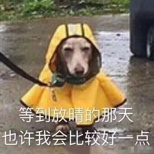 周末降温又降雨啦…15℃穿啥好呢?
