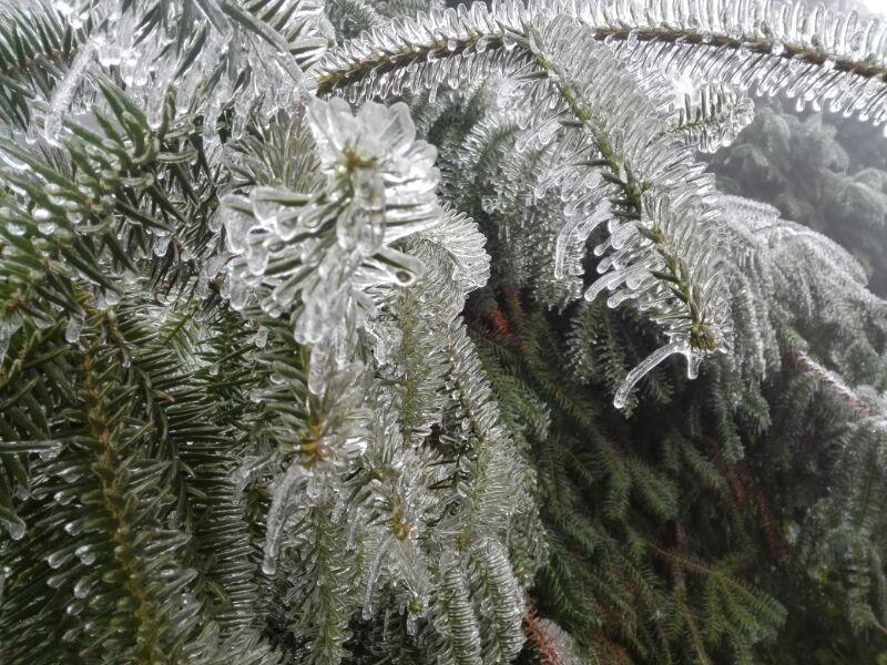 告诉大家一个消息:融水杆洞乡又结冰了,气温零下3℃