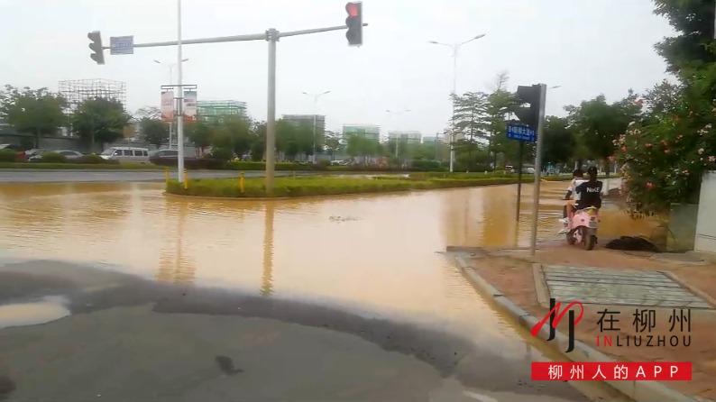 新柳大道再次水漫车道,这次又是什么原因?