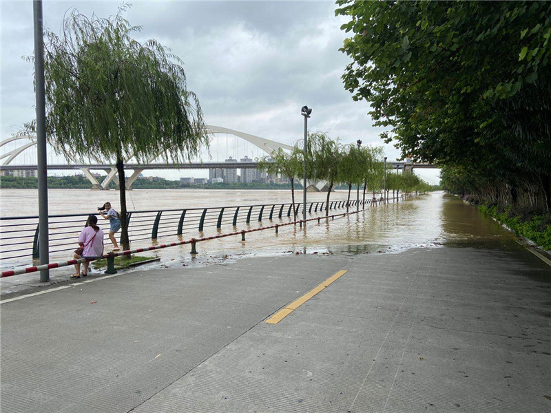 注意!12日0时前后柳江河将出现83.0米左右洪水 防洪Ⅳ级应急响应已启动