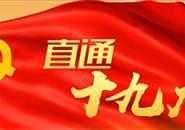 中国共产党第十九届中央纪律检查委员会第一次全体会议公报