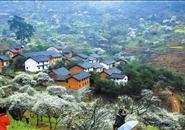 柳州1亿元建美丽乡村示范  郑俊康:要保护好古树古村落