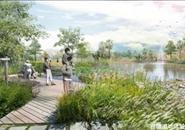 【一周大事记】新景观——湿地公园来啦!