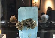 柳州国际奇石节11月1日开幕!除了赏石,还有这些奇珍异宝