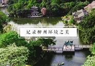"""恭喜!""""春花秋水 画卷柳州 e起来点赞""""短视频大赛获奖结果揭晓!"""