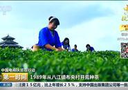 得空咩?!三江县长在央视喊你们来三江喝茶咯!