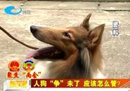 """委员支招:人狗""""争""""未了 应该怎么管?"""
