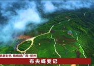 @三江布央村、融水荣地村,乡村旅游搞得好,你们被国家点名了!