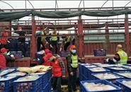 农民伯伯在行动!鹿寨、融安的6万多斤水果即将运往湖北