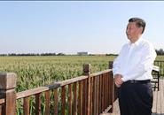 习近平:让乡亲们的日子越过越红火