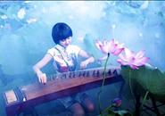 柳州紫荆花摄影大赛相机组获奖作品