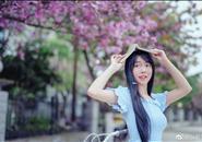 网友紫荆花摄影作品