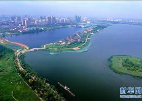 """河北衡水:盐碱荒地变身""""城市绿肺"""""""